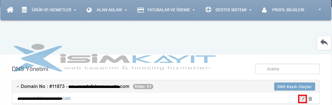 name server kaydı