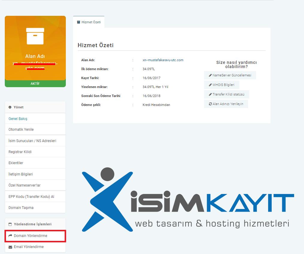 Domain yönlendirme